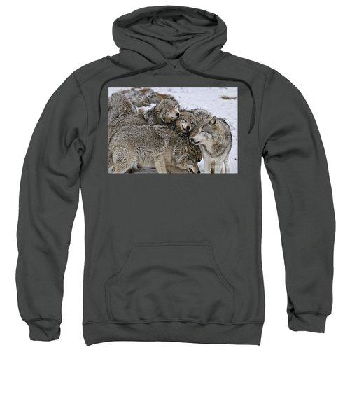 Happy Wolf Pack Sweatshirt