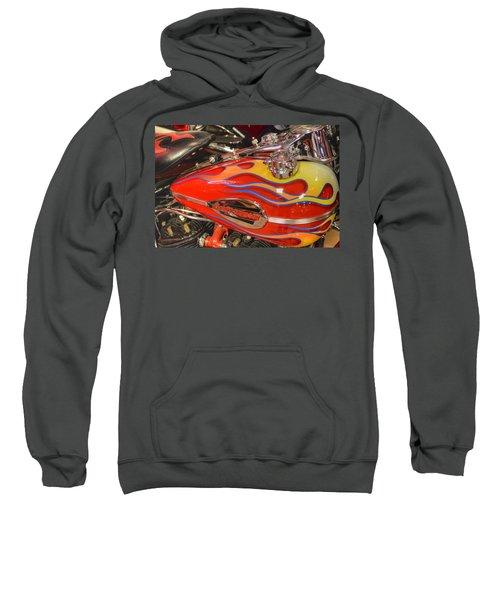 Harley-davidson  Sweatshirt
