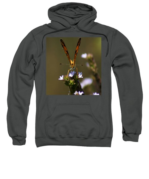 Sweatshirt featuring the photograph Head-on by Kim Pate