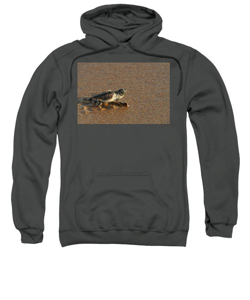 Heading Out To Sea Sweatshirt