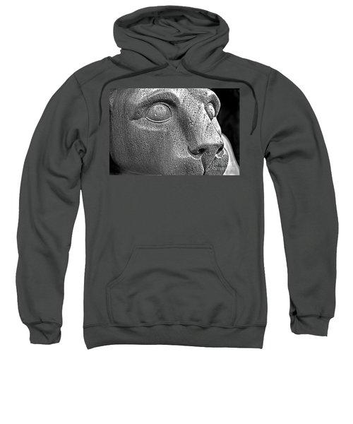Heinz Warneke's Mountain Lion Sweatshirt
