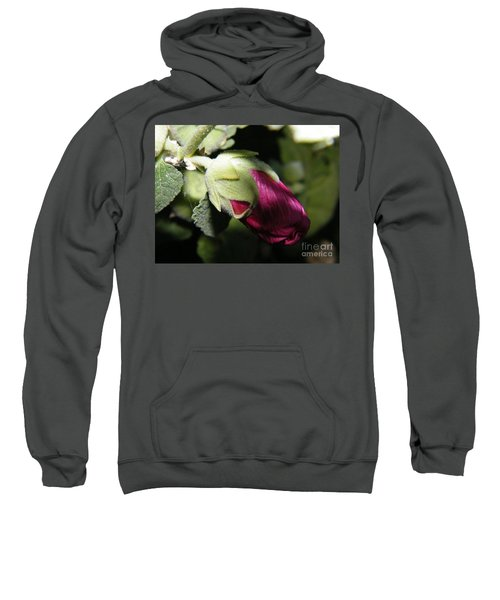 Hollyhock Shadows Sweatshirt