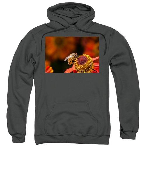 Honeybee At Work Sweatshirt