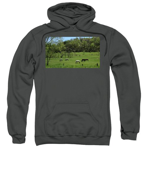 Horse 27 Sweatshirt