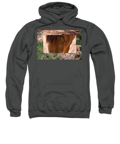 Horse And Canyon Sweatshirt
