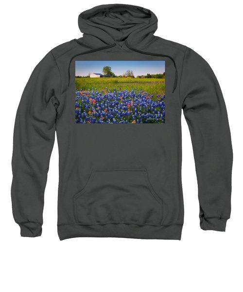 Horses Coming Home Sweatshirt