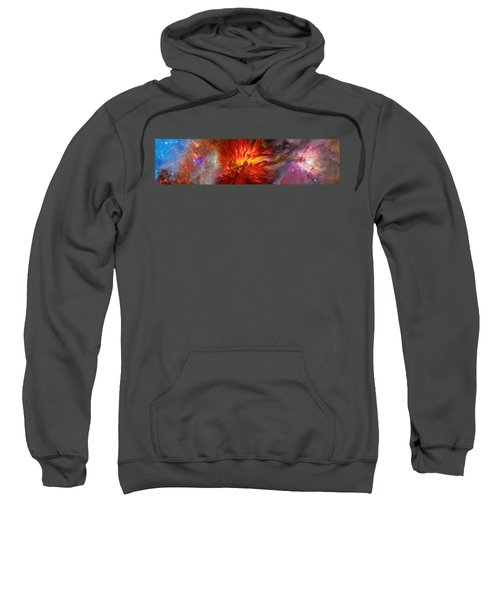 Hubble Galaxy With Red Chrysanthemums Sweatshirt