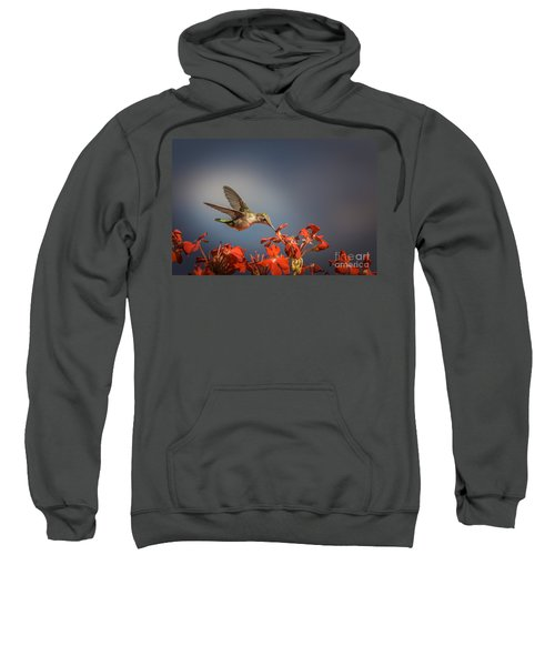 Hummingbird Or My Summer Visitor Sweatshirt