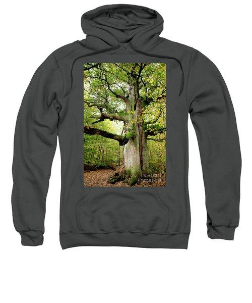 I Am Nearly 1000 Years Old Sweatshirt