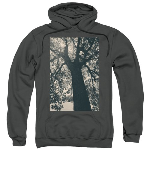 I Can't Describe Sweatshirt