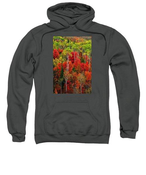 Idaho Autumn Sweatshirt
