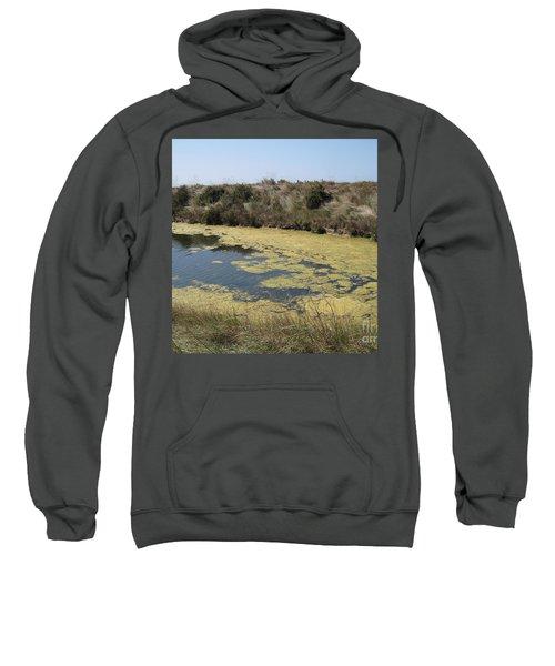 Ile De Re - Marshes Sweatshirt