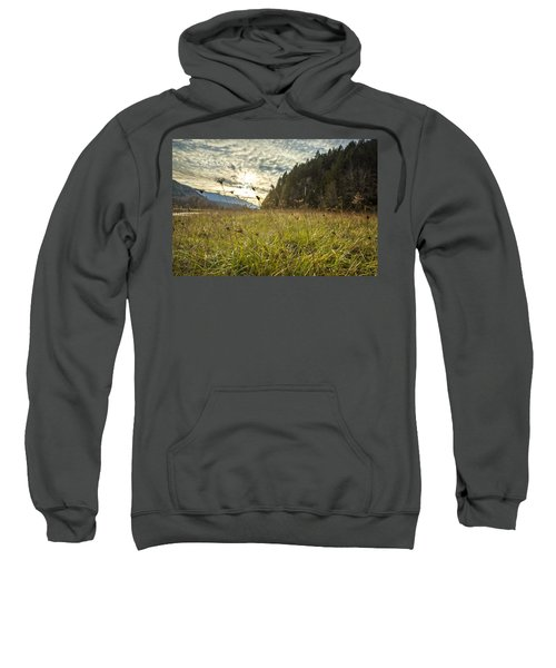 Illumination Sweatshirt