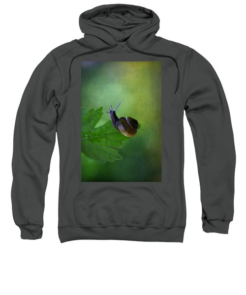 I'm Not So Fast Sweatshirt
