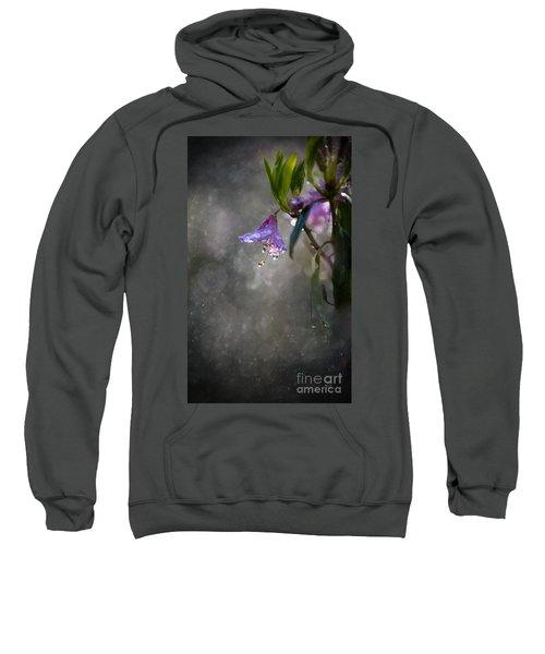 In The Morning Rain Sweatshirt