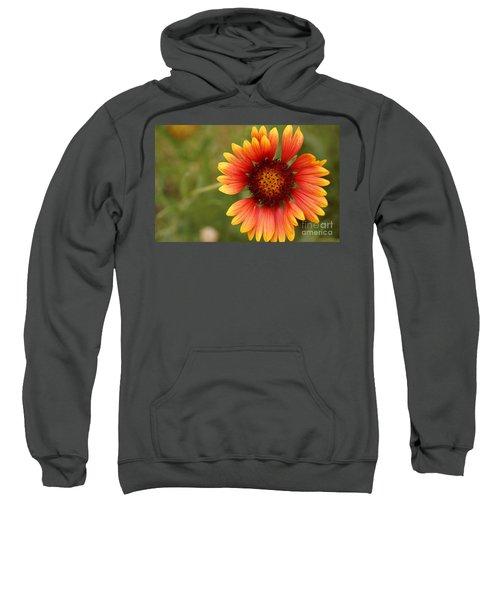 Indian Blanket Flower Sweatshirt