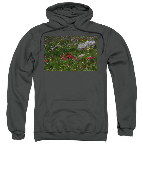 Indian Paintbrush II Sweatshirt