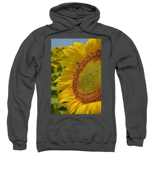 Itsy Bitsy Sweatshirt