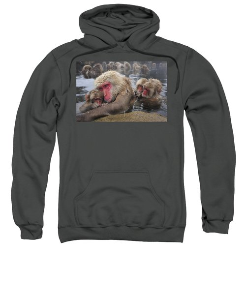 Japanese Macaque Grooming Mother Sweatshirt