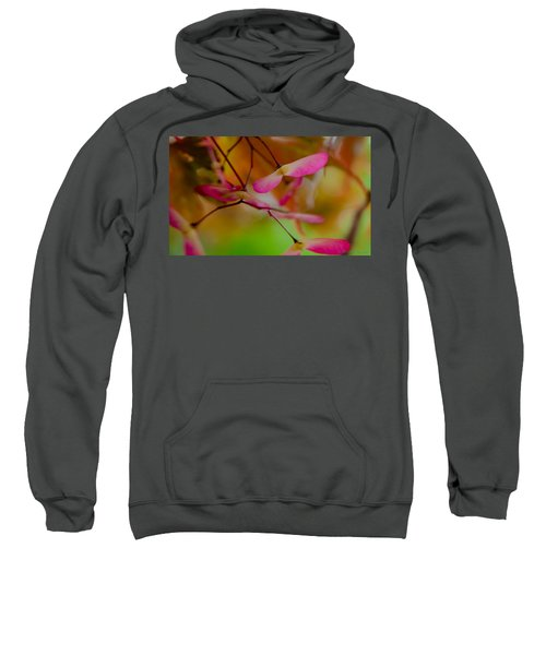 Japanese Maple Seedling Sweatshirt