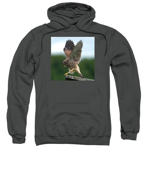 Kestrel's Performance Sweatshirt