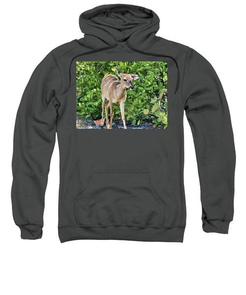 Key Deer Cuteness Sweatshirt