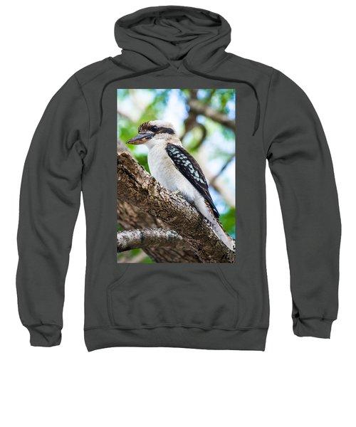 Kookaburra  Sweatshirt