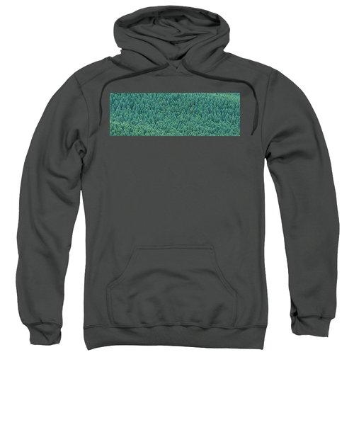 Kujyu Cho Ooita Japan Sweatshirt