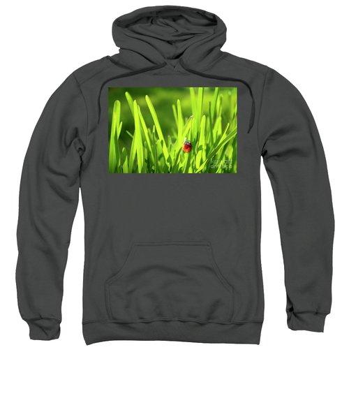 Ladybug In Grass Sweatshirt