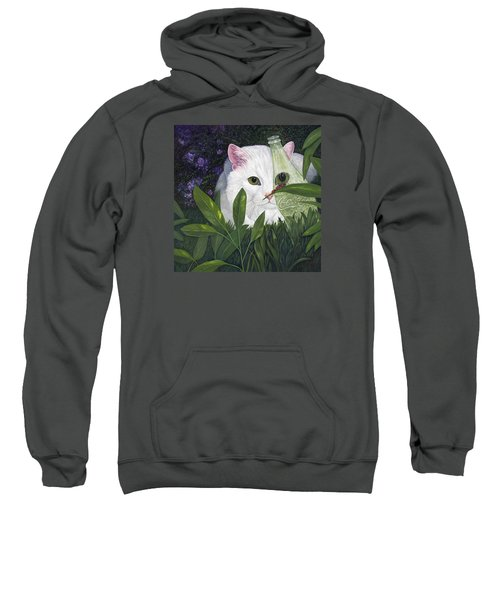 Ladybugs And Cat Sweatshirt