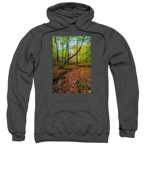 Land Of The Fairies Sweatshirt