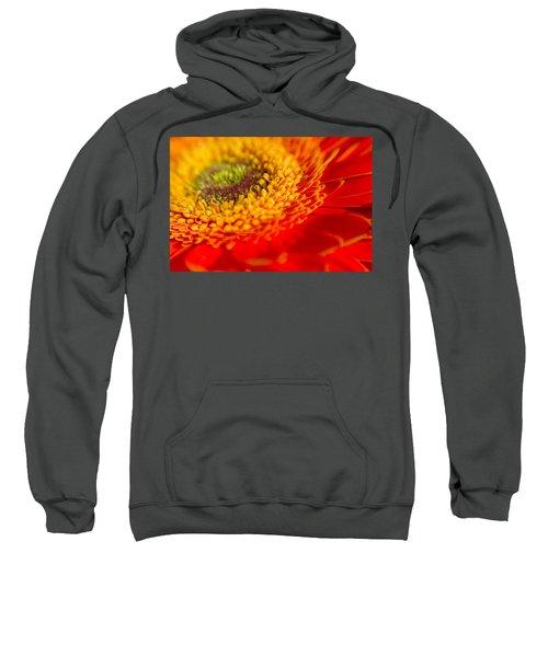 Landscape Of A Flower Sweatshirt