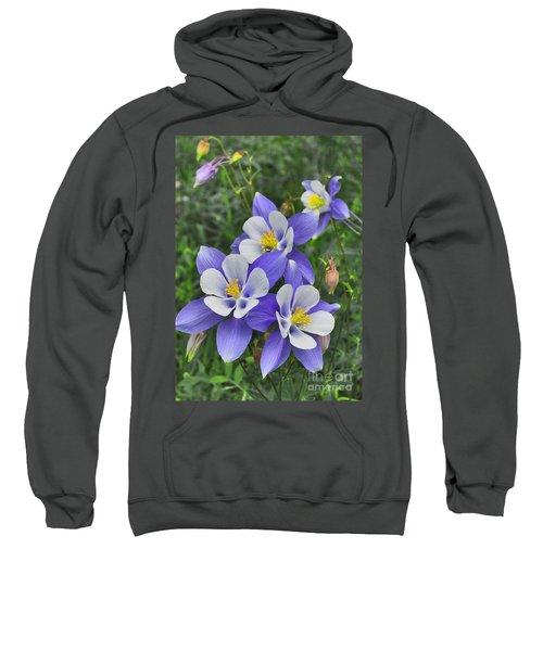 Sweatshirt featuring the digital art Lavender And White Star Flowers by Mae Wertz