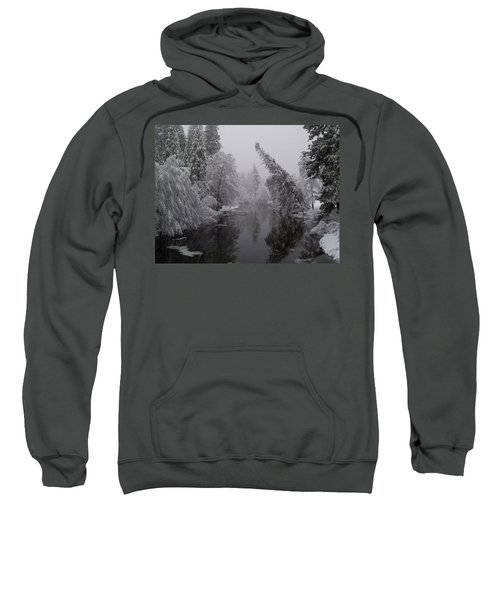 Leaning Tree Sweatshirt