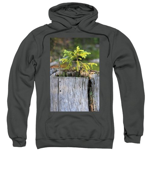 Life After Death Sweatshirt