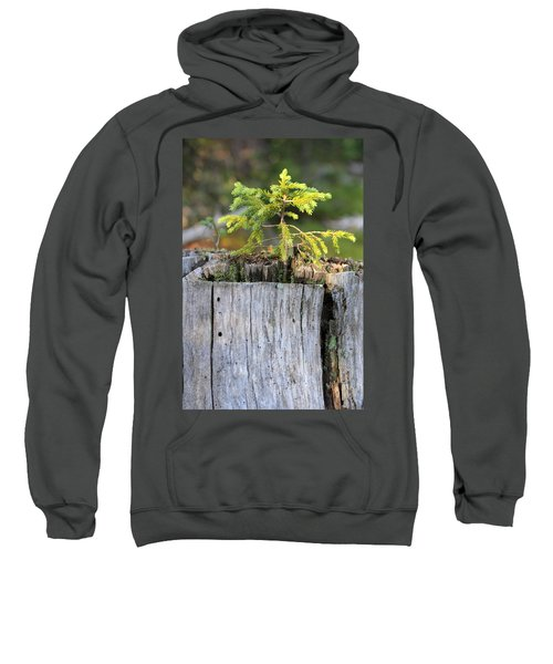 Life After Death Sweatshirt