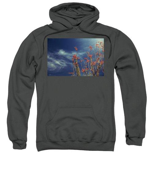 Like Flying Amongst The Clouds Sweatshirt