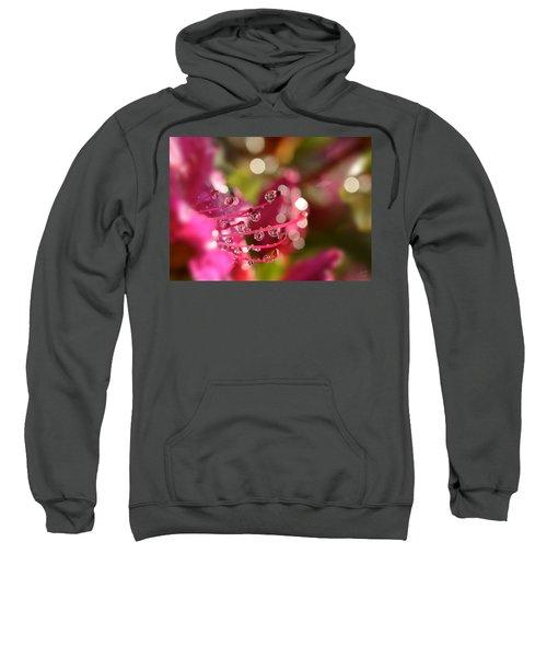 Liquid Light Sweatshirt