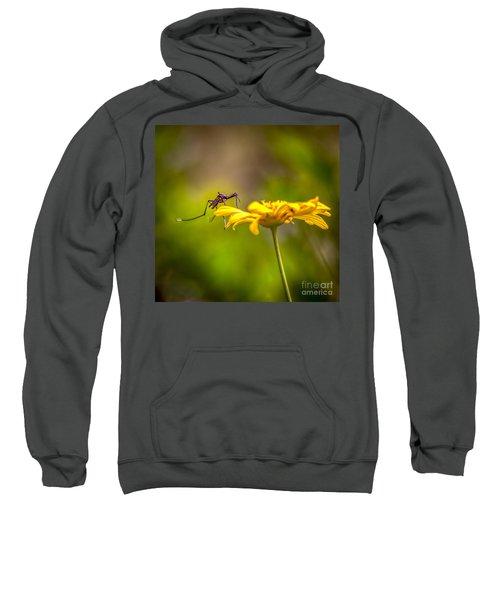 Little Biter Sweatshirt