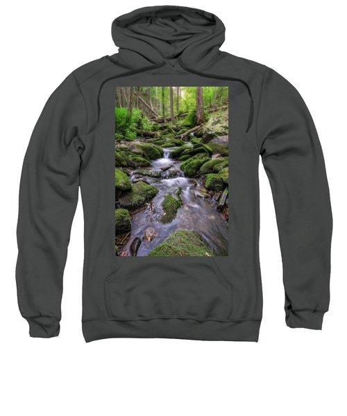 Little Bush Kill Sweatshirt