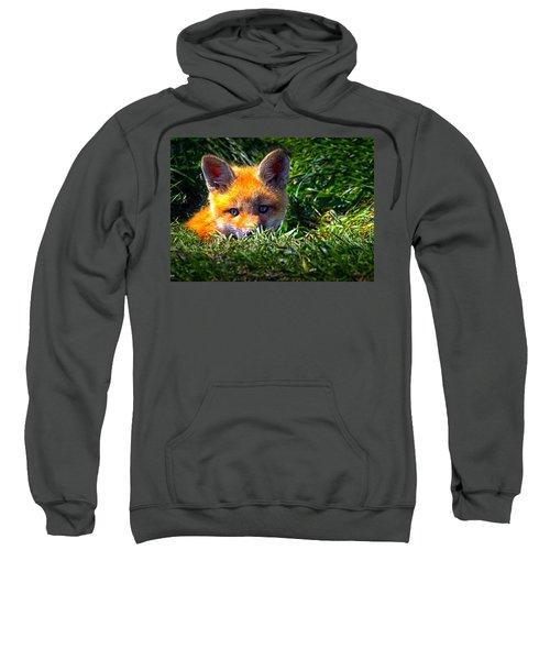Little Red Fox Sweatshirt