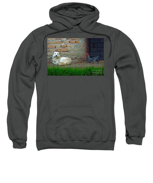 Living In Perfect Harmony Sweatshirt