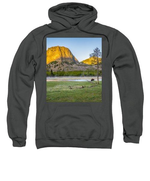 Lone Buffalo Yellowstone National Park Sweatshirt
