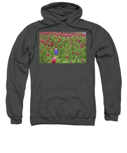 Lonely Bluebonnet Sweatshirt