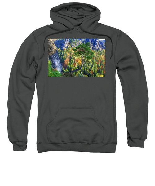 Lonely Tree In The Elbe Sandstone Mountains Sweatshirt