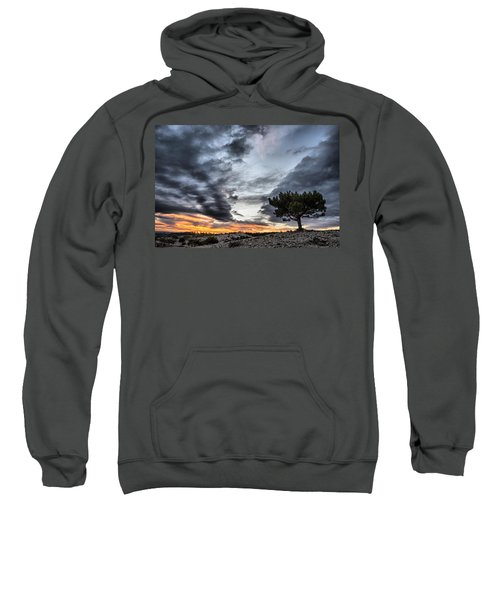 Lonely Tree Sweatshirt