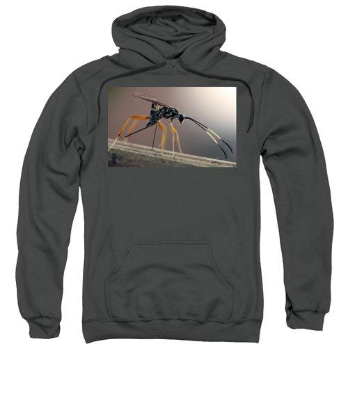Long Legged Alien Sweatshirt