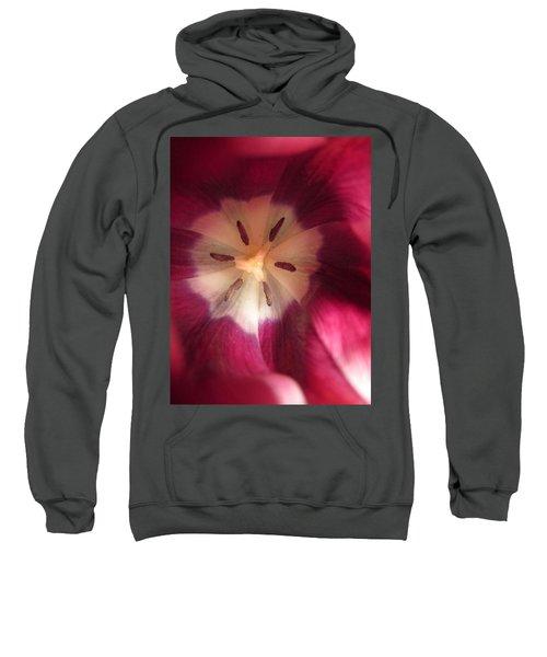 Look At Me Sweatshirt