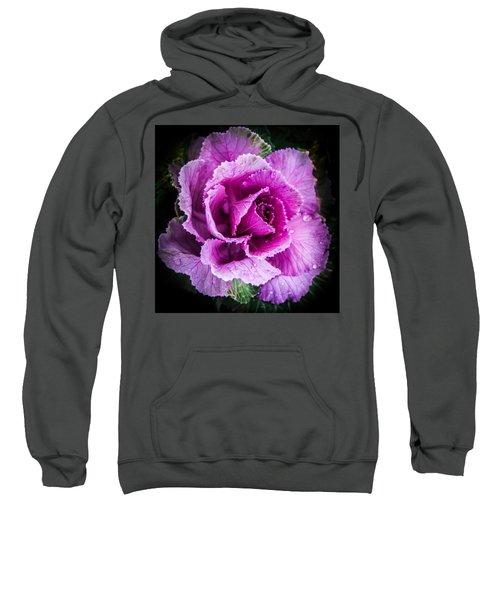 Love Of Lavender Sweatshirt