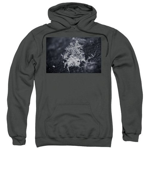 Macro Snowflake Sweatshirt